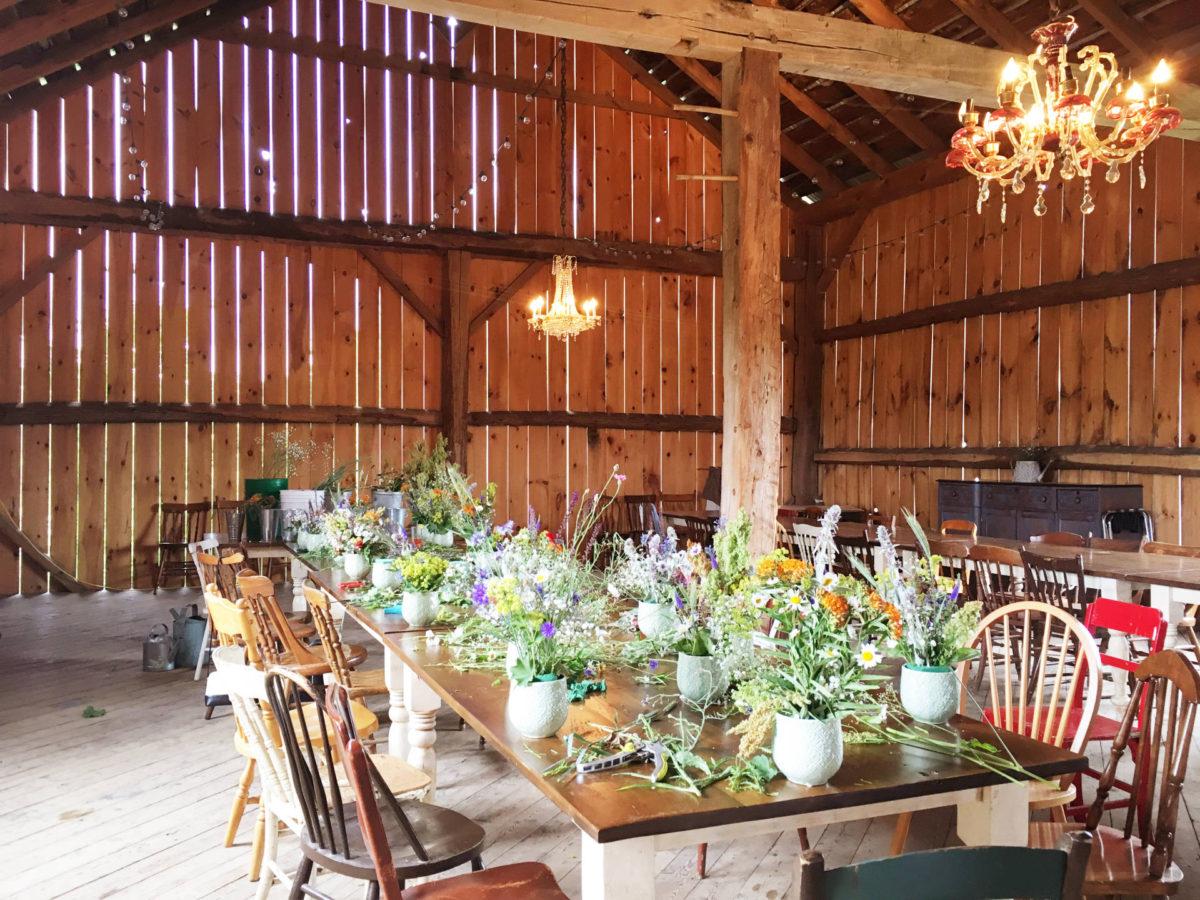 Country Escape: South Pond Farms