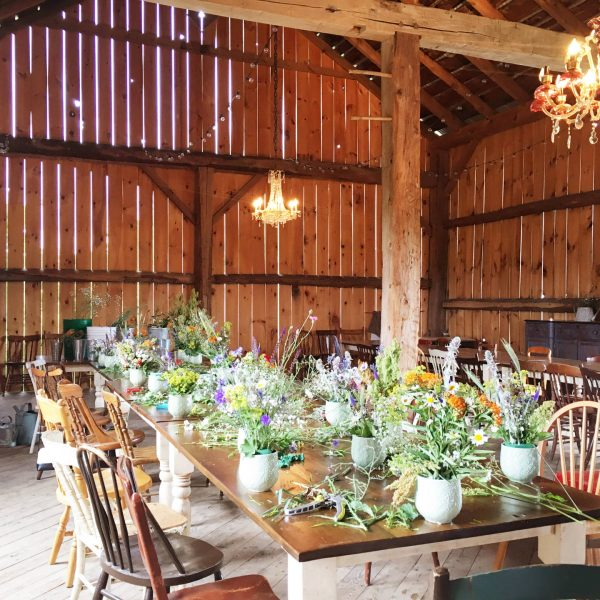 Country Escape: South Pond Farms